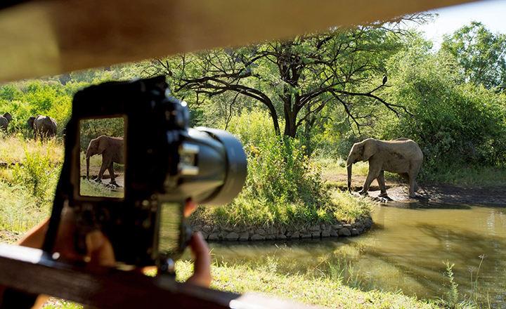 Pilanesberg National Park02.jpg
