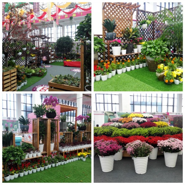 花木节-家庭园艺展区