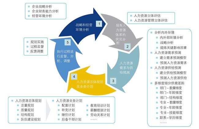 人力资源规划与组织结构设计图片1.png