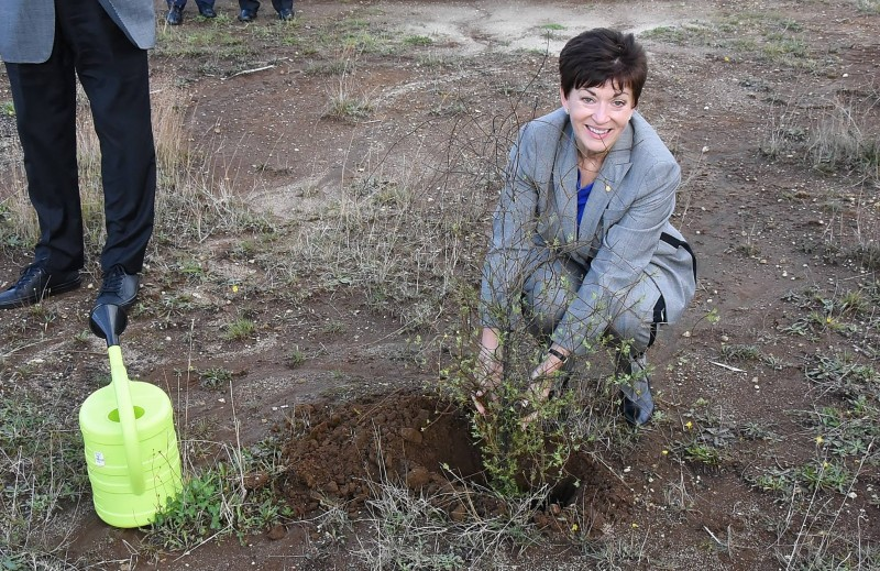 Dame Patsy planted a tree from Pa Harakeke's native tree nursery to help offset carbon emissions. Offical Facebook Page.jpg