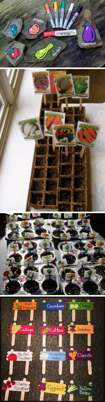 自然区-蔬菜分类 (3).jpg