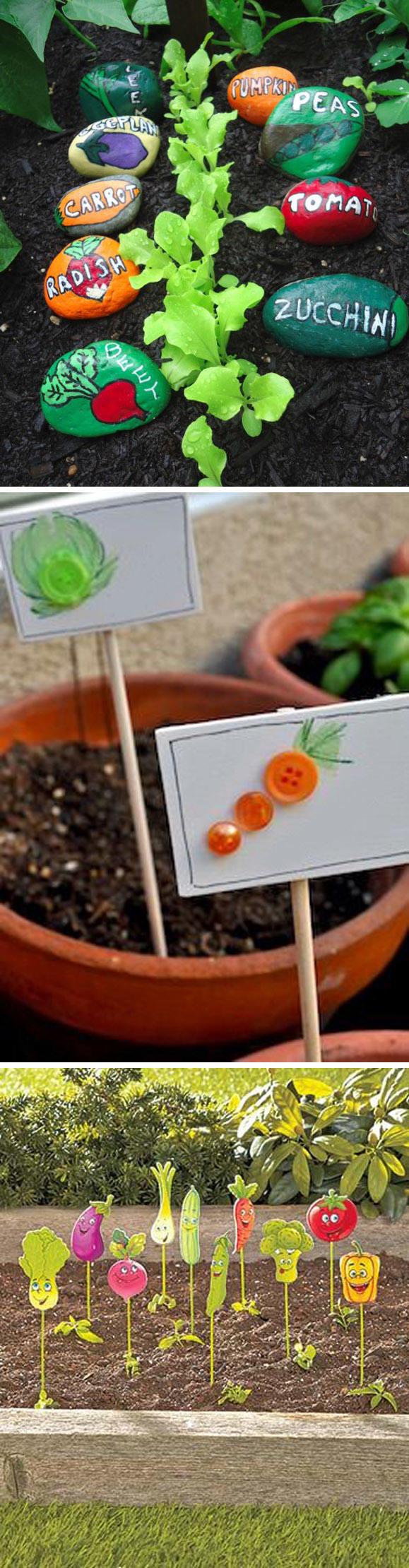 自然区-蔬菜分类 (1).jpg