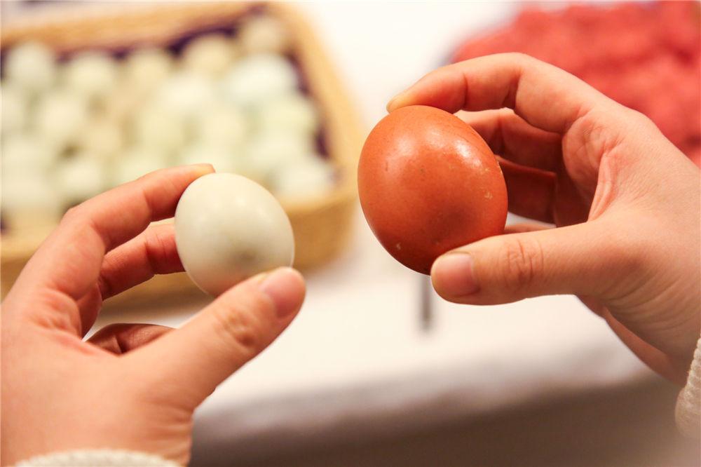 绿鸟蛋vs鸡蛋.jpg
