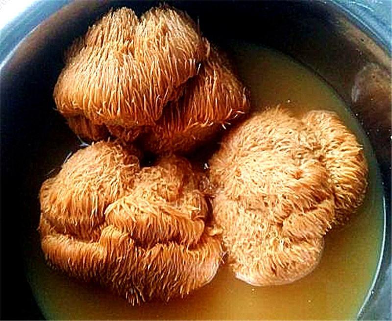 猴头菇炖汤.jpg