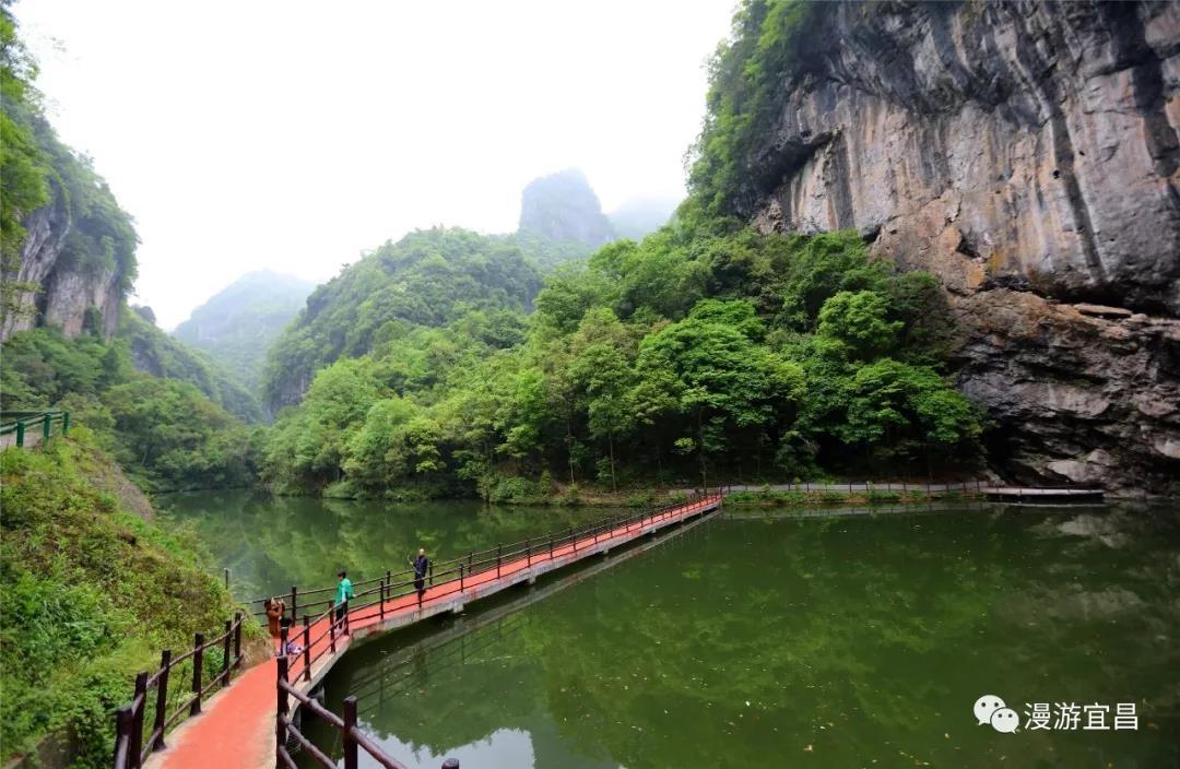 近年来,湖北中亚楠木林风景区不断扩大禁烟宣传力度,在各主要