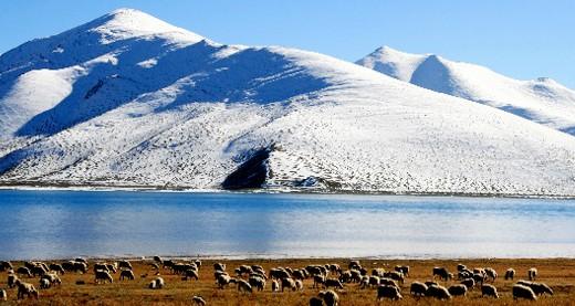 中国北国冬天风景