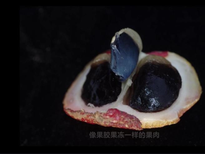 微信图片_20190605175938_看图王.png