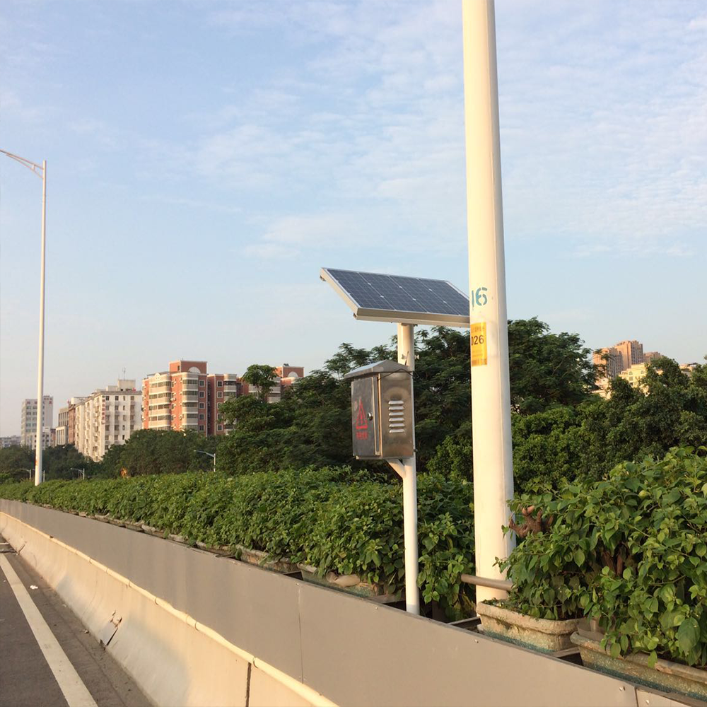 天桥绿化.png