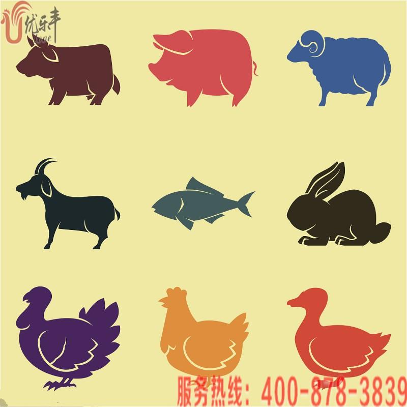 青岛畜牧业预计2020年全产业链产值突破1000亿元|小鸡开口料优乐丰