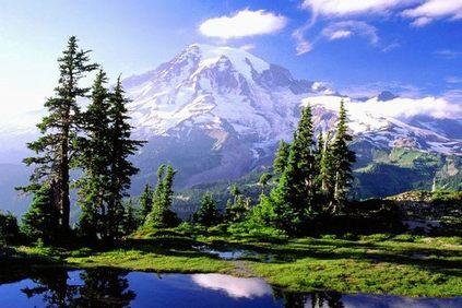 雷尼尔山国家公园(2).jpg