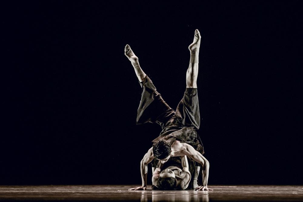 """038 第十届中国舞蹈""""荷花奖""""当代舞、现代舞评奖 摄影@舞蹈中国-刘海栋.jpg"""