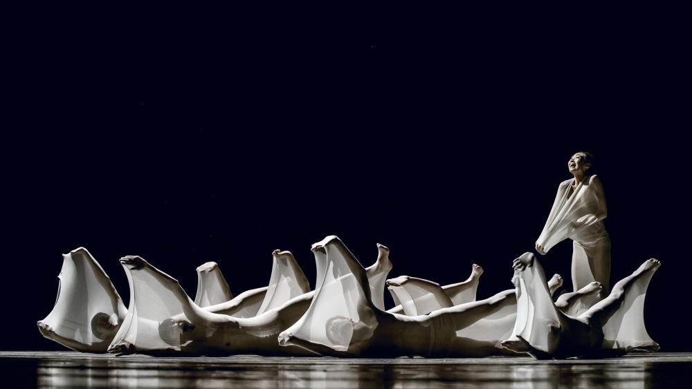 """214 第十届中国舞蹈""""荷花奖""""当代舞、现代舞评奖 摄影@舞蹈中国-刘海栋.jpg"""