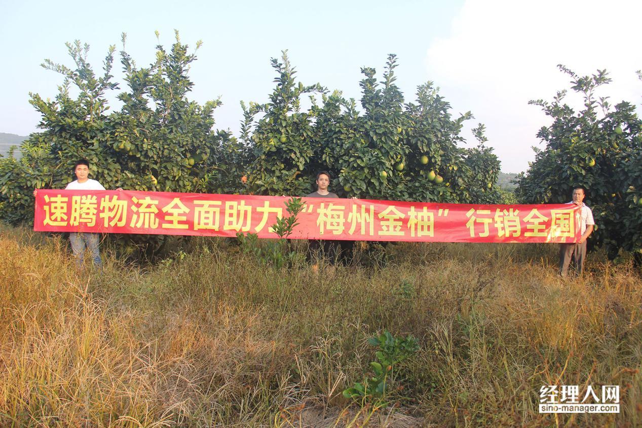 速腾物流董事长吕琨:梅州金柚从田间到舌尖,不是一件容易事