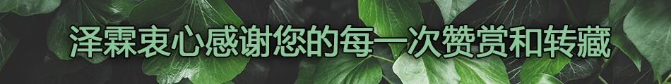 leaf-leaves-background-picjumbo-com.jpg