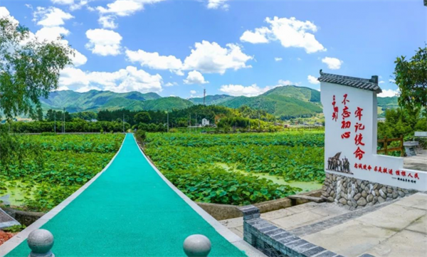 庆元县淤上乡.png