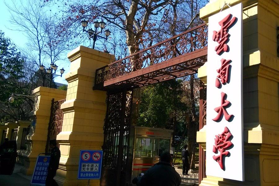 云南大学1-900.jpg
