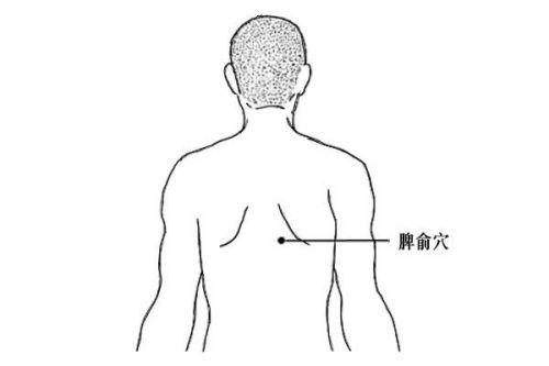 常见病的艾灸穴位和艾灸方法