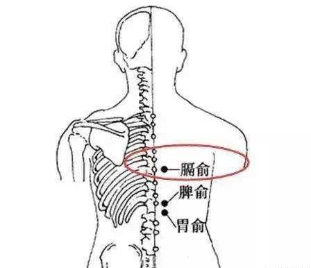 胃炎艾灸哪个位置有效?