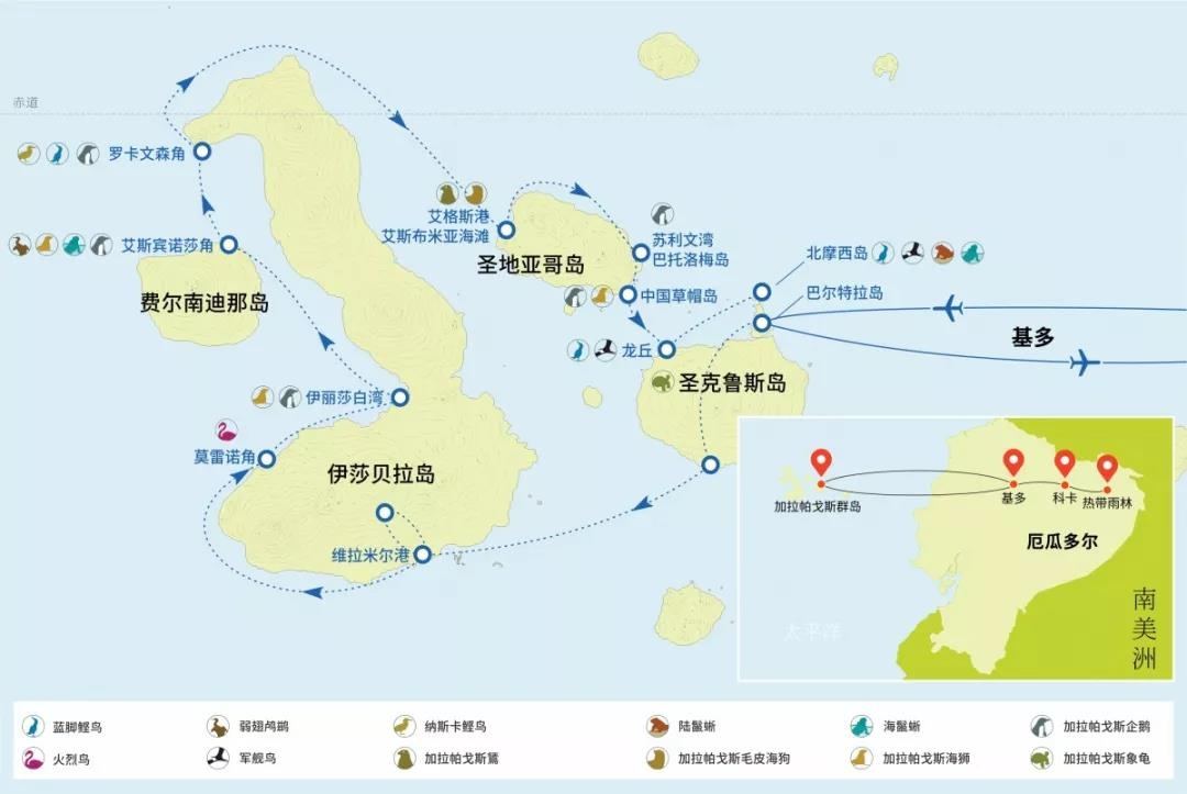 加岛3.jpg