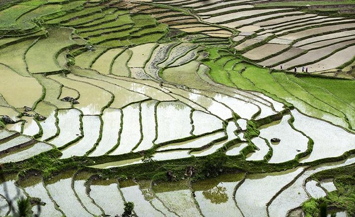 不丹2.jpg