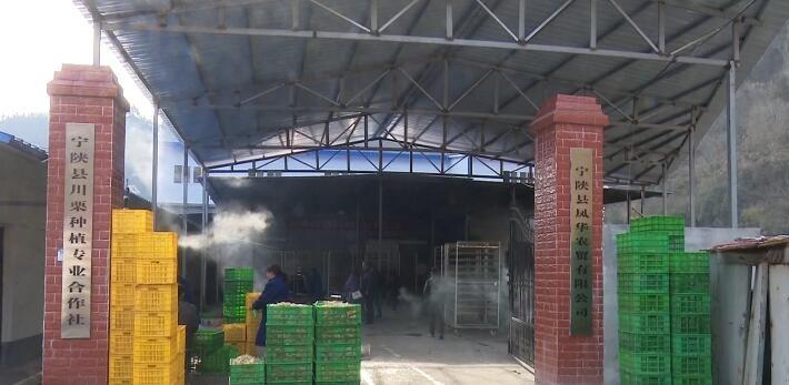 阳光扶贫之窗 今日宁陕  金川镇特色社区工场 助农增收致富