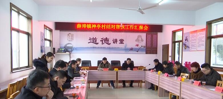 区领导赴薛埠镇神亭村开展结对帮扶