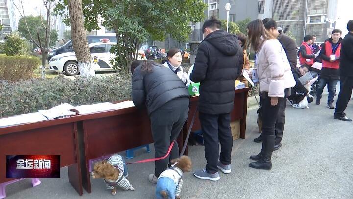 金坛区开展城市文明养犬集中整治活动