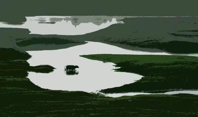 汪洋3.jpg