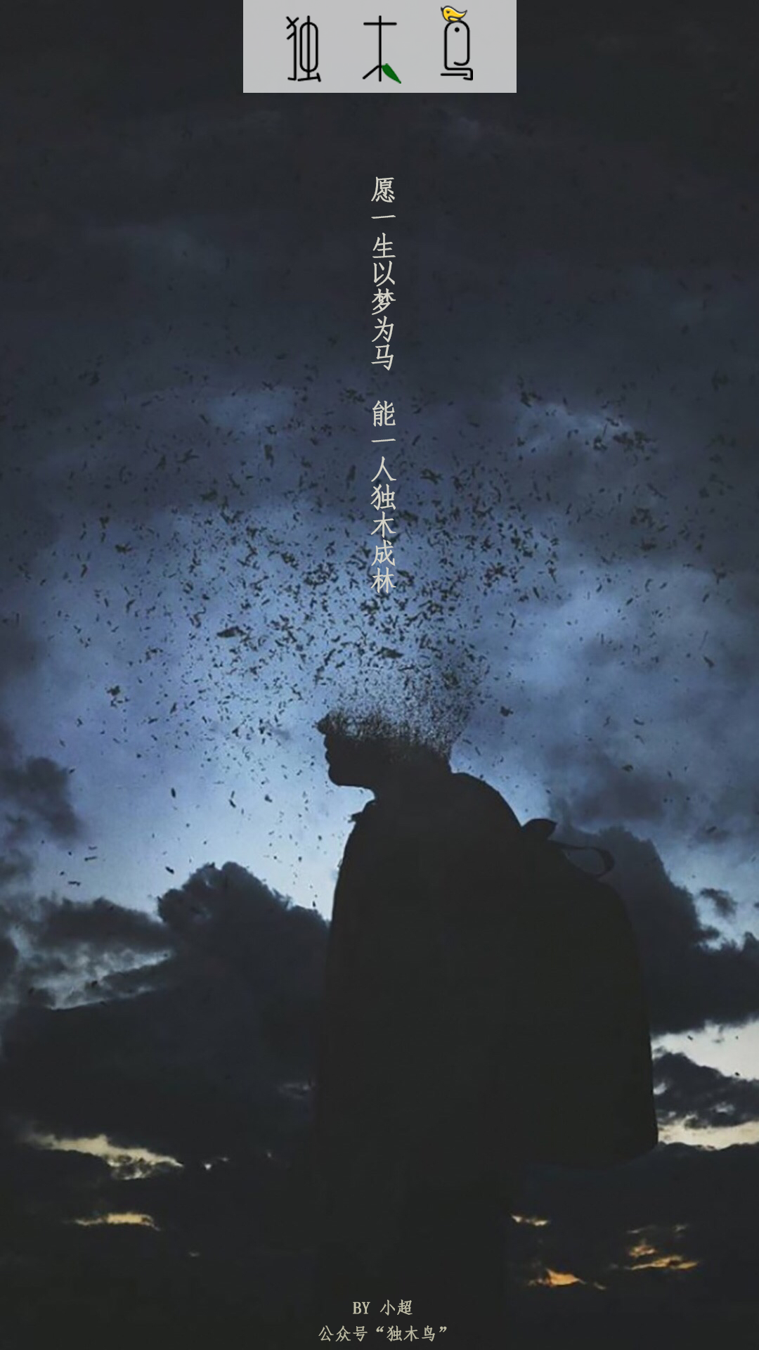 这些配图也太美了吧,今天都免费分享给你 | 独木鸟意境海报 第1辑  54张