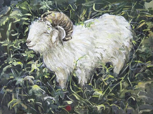 山羊色彩写生作品