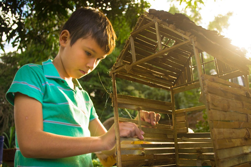 bamboo-boy-child-2387917.jpg