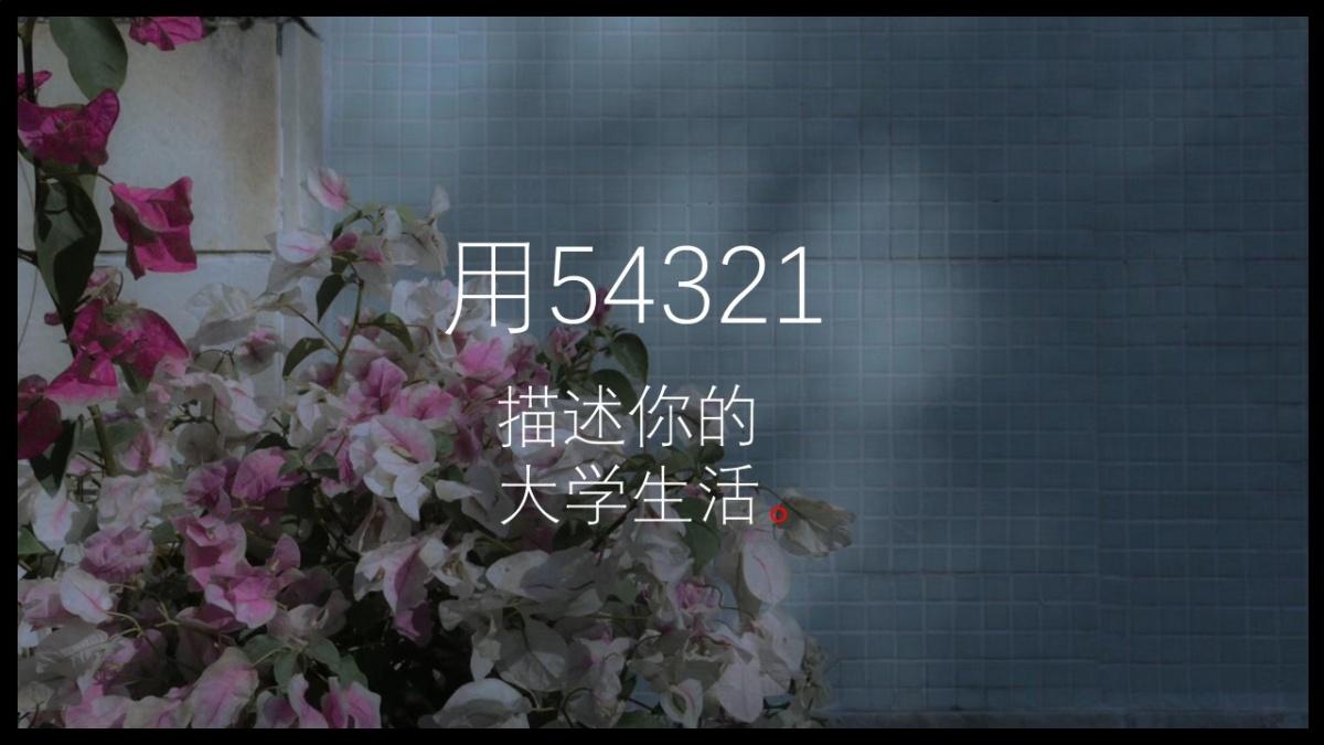 用54321描述.jpg
