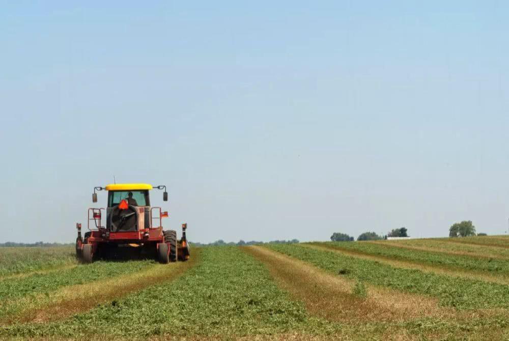 法国:国家出资建立农业大数据.png