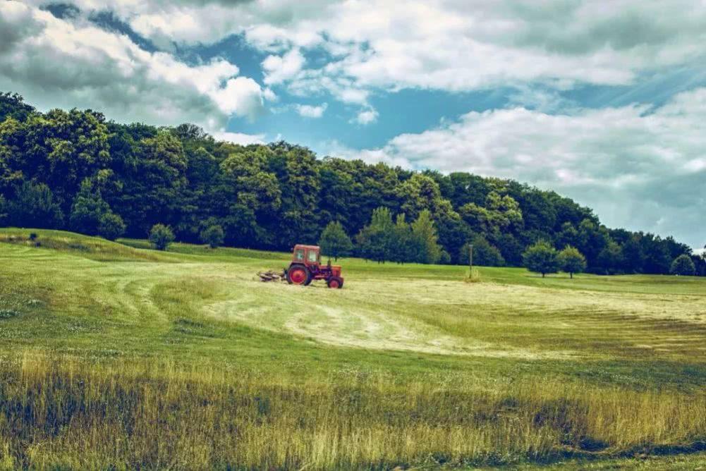 荷兰:购买卫星大数据,为农业提建议.png